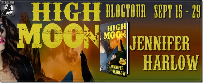 High Moon Banner 851 x 315