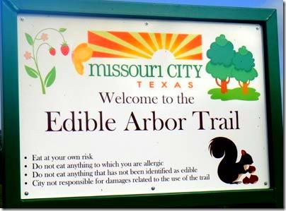 3-edible-arbor