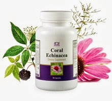 Корал Ехинацея / Coral Echinacea