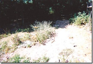 before pond 1
