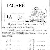 jacar%C3%A9_gif.jpg