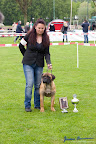20100513-Bullmastiff-Clubmatch_30972.jpg