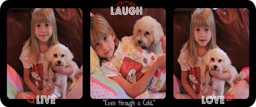 Ava cold collage