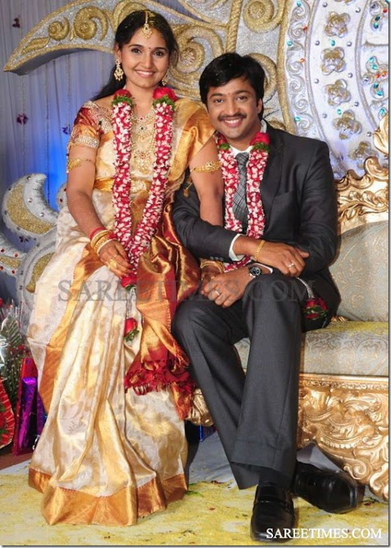 Aryan_Rajesh_Subhasini_Wedding_Reception (3)