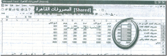 excel_for_accounting-178_06