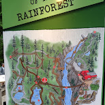 map of the rainforest in North Vancouver, British Columbia, Canada