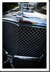Vintage Jaguar Grill