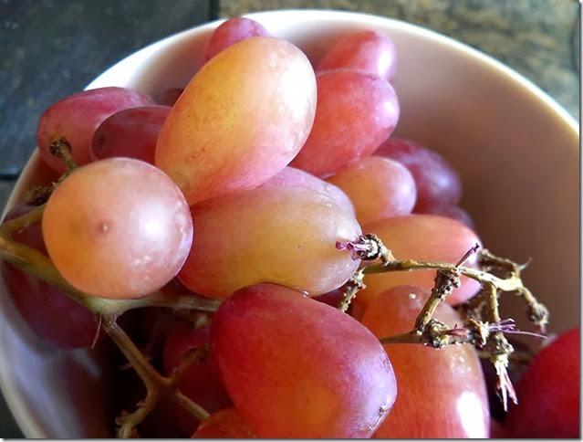 grapes-public-domain-pictures-1 (2230)