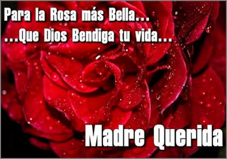 Para la rosa mas bella mi madre