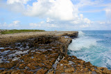 Powerful Ocean Waves At Devil's Bridge (Shot 3 of 14) - St. George's, Antigua