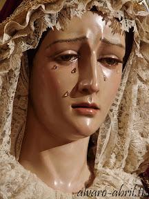 presentacion-virgen-de-la-amargura-de-berja-en-la-hermandad-del-sol-de-sevilla-julio-2012-restauracion-bonilla-alvaro-abril-(2).jpg