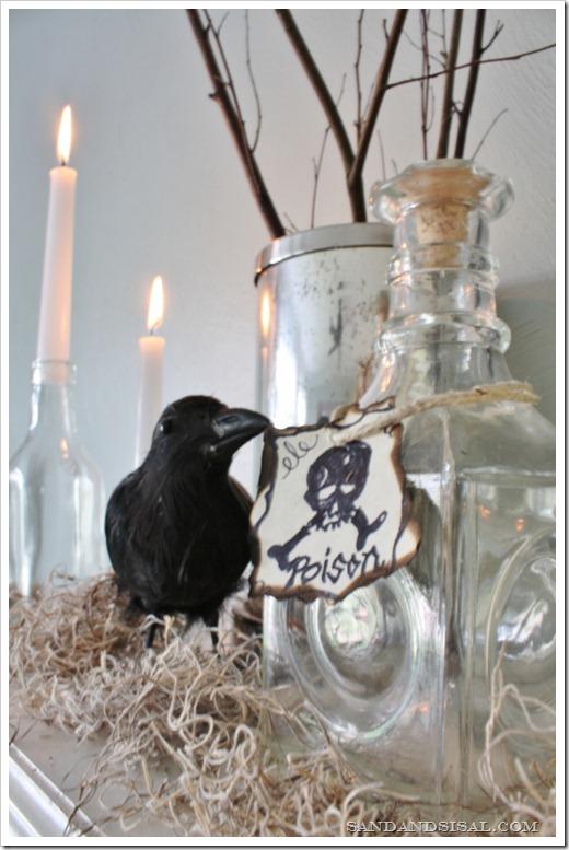 crow & poison (533x800)