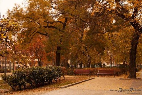 budapest_20111120_erzebetter