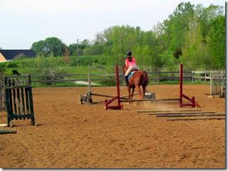 horse05-19-14l