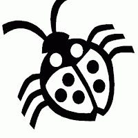 ladybug-3.jpg