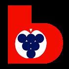 Beratungsring App icon