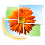 Windows-Live-Photo-Gallery-Logo