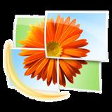 Windows-Live-Photo-Gallery-Logo