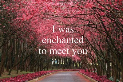 i_was_enchanted_to_meet_you_quote