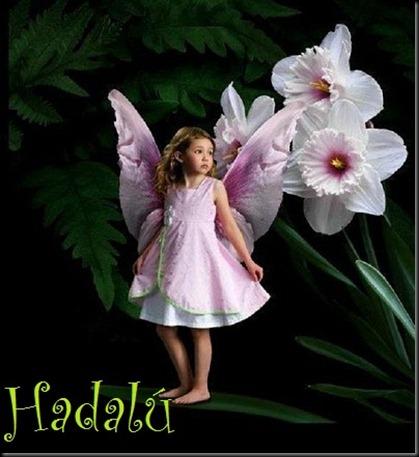 niñashadas-Hadalú5000