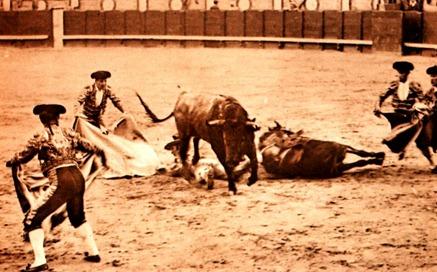 img_0015 Una caida el matador al quite