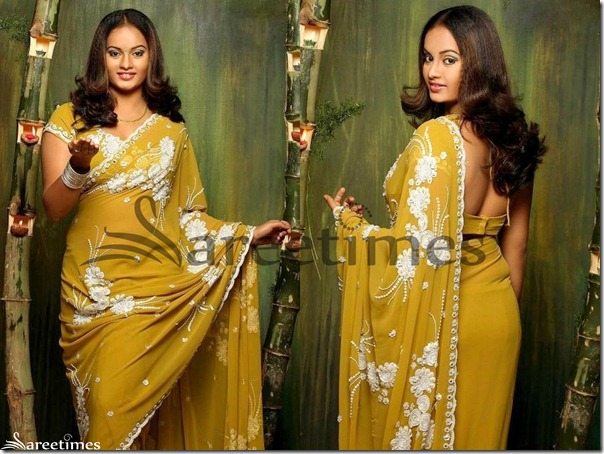 Suja_Embellished_Saree