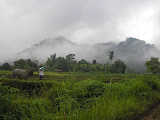 Gunung Tiga in mists - on way to Gunung Sago (Daniel Quinn, September 2011)