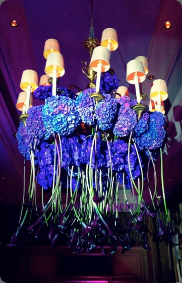 chandelier jeff latham 598589_10151035630701972_1856011819_n