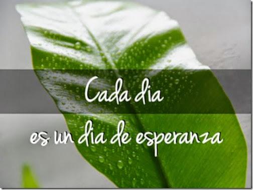 imagenes fraes amor (171)