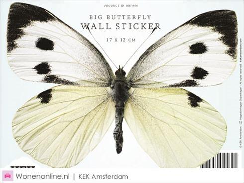 kek-amsterdam-vlinder-butterfly-muurstickers-2