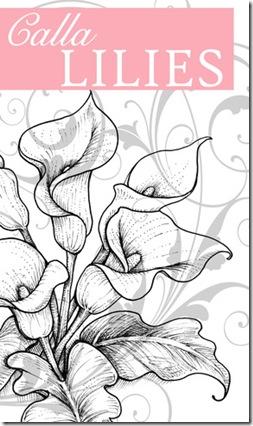 Calla Lilies Graphic