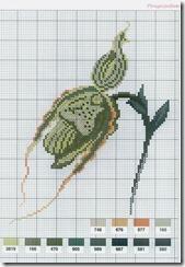 flor-ponto-cruz-grafico-5