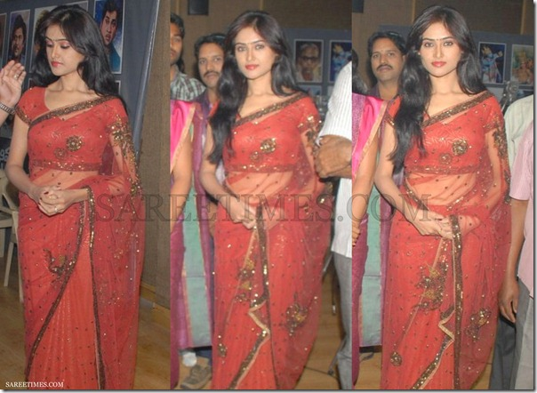 Red_Embroidery_Saree
