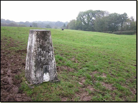 Norman's trig point (60 metres) - a famous landmark of Meadowlands