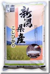 niigata_kosihikari_common