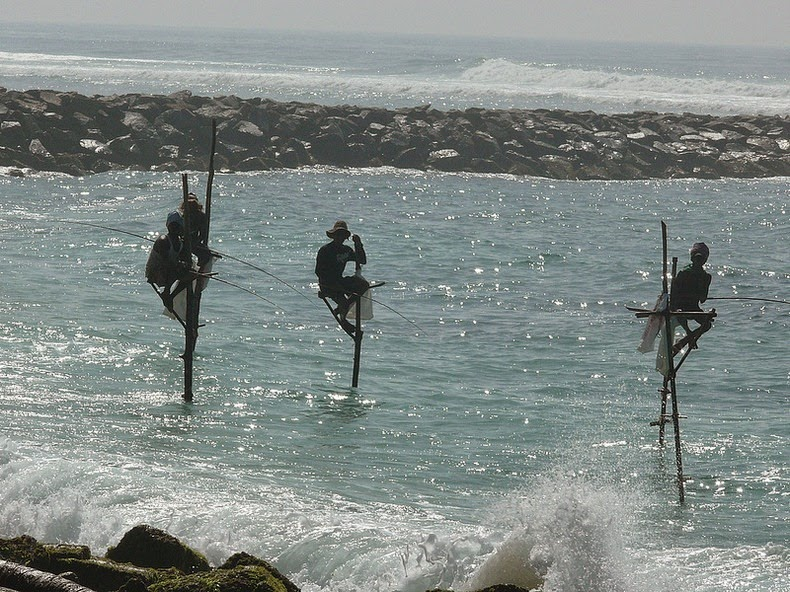 stilt-fishermen-sri-lanka-1