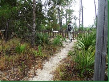 Pat's Island Trail 072