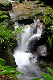 A Rushing Creek Near Emerald Pool - Roseau, Dominica