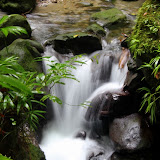 A Rushing Creek Near Emerald Pool - Roseau, Dominica