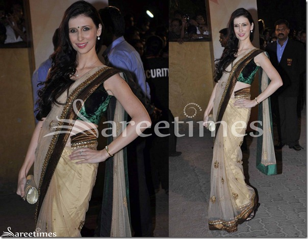 Cream_Designer_Shimmer_Saree