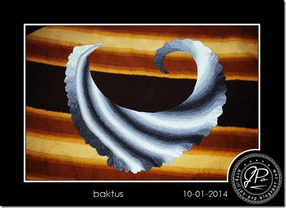 JPo-baktus-2014-01-10