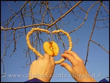 Ghiotte-leccornie-per-gli-uccellini-[54]