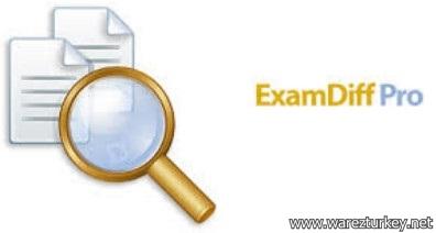 ExamDiff Pro Master Edition 7.0.1.9 Full