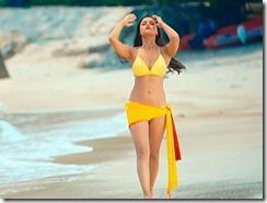 alia bhatt bikini