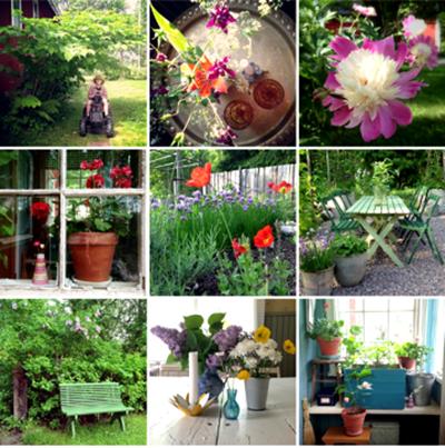 Instaträdgård