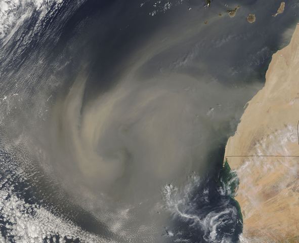A large, swirling mass of dust, measuring several hundred kilometers across, was blowing from the Western Sahara over the Atlantic Ocean on 4 September 2005, when the Moderate Resolution Imaging Spectroradiometer (MODIS) on NASA's Terra satellite captured this image. Photo: Jeff Schmaltz, MODIS Rapid Response Team, NASA / GSFC