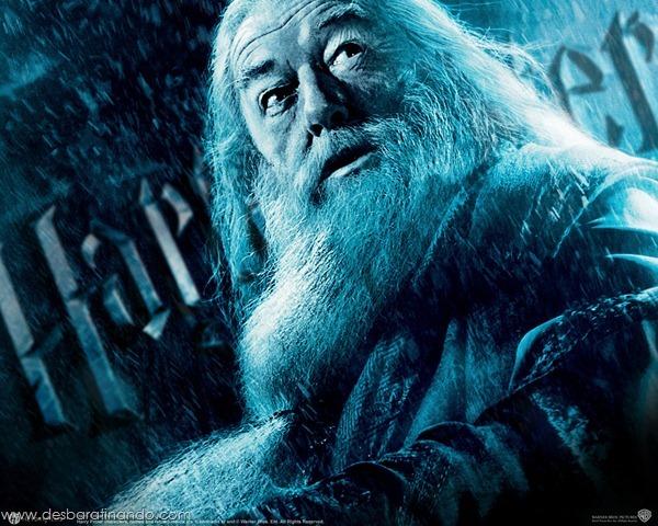 Harry-Potter-and-the-Half-Blood-Prince-Wallpaper-principe-mestiço-desbaratinando (27)
