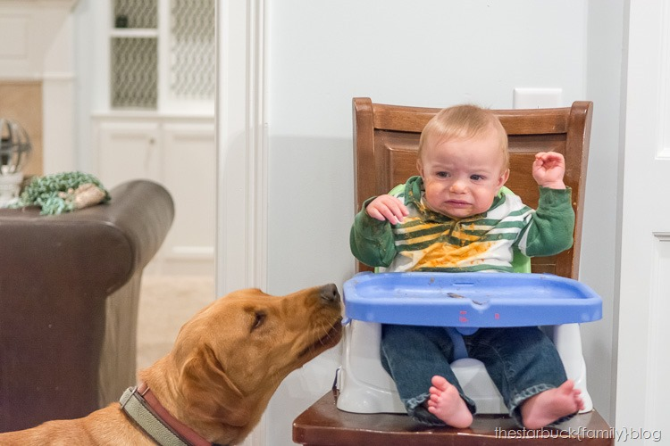 Ethan and Simon in highchair blog-5