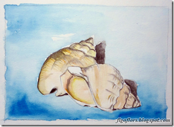 Figaflors_i_Braves_watercolor_shells