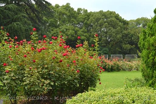 Glória Ishizaka -   Kyoto Botanical Garden 2012 - 109